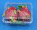Contenitore impaccante di plastica 1000gram di frutta e della verdura della casella di imballaggio per alimenti