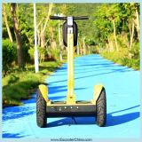 Vespa eléctrica aprobada CE del retroceso E de la movilidad de la vespa del ciclomotor (ESIII)