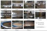 Vitesse externe 31 de roulement de plaque tournante de roulement de boucle de pivotement de Rollix 0841 01