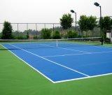 La corte di tennis, il campo da pallacanestro, l'unità di elaborazione Cour del silicone, mette in mostra la corte