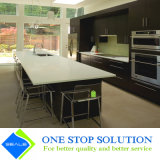Armadio da cucina nero della mobilia dell'armadietto di rivestimento dell'impiallacciatura del MDF (ZY 1156)
