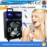 Ms-12D Rechargeable Trolley Speaker mit Bluetooth/FM/MP3/SD