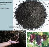 fertilizzante fogliare dell'alga organica professionale con il certificato del Ce