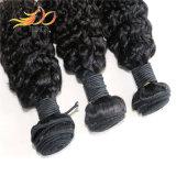 8A trama dei capelli del Virgin del Mongolian di alta qualità 100%