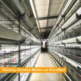 Tipo caldo gabbia automatica di vendita H del pollo per l'azienda avicola
