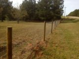 Гальванизированная загородка ячеистой сети фермы поголовья козочки
