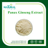 Fábrica 100% natural de calidad superior Panax Ginseng Extract Powder