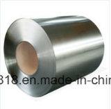 Galvanisierter Stahlring (DC51D+Z, DC51D+ZF, St01Z, St02Z, St03Z)