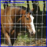 Frontière de sécurité galvanisée de bétail de frontière de sécurité de cheval de maille tissée par fil de fer de joint de charnière et frontière de sécurité de ferme