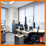 Оптовые шторки ролика высокого качества для украшения дома/компании/гостиницы