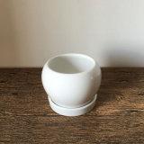 Crisol de cerámica brillante de interior hecho a mano de la planta