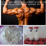 Testosteronas estándar Turinabol CAS No. del esteroide 4-Chlordehydromethyl del GMP: 2446-23-3