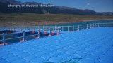 De plastic Drijvende Brug van het Ponton voor het Bekijken van het Landschap