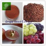 Extracto de semilla de uva