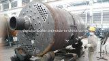 Pétrole d'ASME, gaz, chaudière à vapeur industrielle duelle de l'essence 4 Ton/Hr