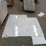 Het Marmer van Italië Calacatta, het Marmeren Witte, Witte Marmeren Ontwerp van de Vloer Calacatta