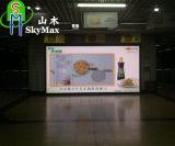 Grand panneau-réclame du grand dos DEL de Pixel bon marché polychrome des prix P10