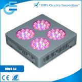 O diodo emissor de luz da estufa da nova S4 cresce a luz
