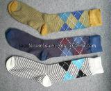 2016 горячих продавая носок платья человека конструкции Argyle