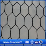 Treillis métallique hexagonal galvanisé par qualité de poulet avec le prix usine