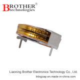 Type condensateur de pièce de monnaie d'Edlc de farad de 5.5V 0.1f fabriqué en Chine