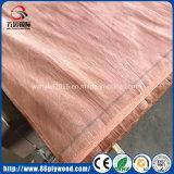 madera contrachapada del álamo de la chapa de Bintangor del pegamento del grado E2 de los muebles 4X8