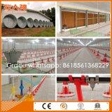 Volles Set-Bratrost-Geflügelfarm-Maschinerie &Equipment mit dem Abgleichen des Fertighaus-Aufbaus