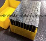 ハードウェアの製造業者のエクスポートStのコンクリートの釘