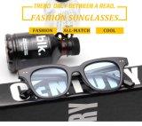 2017 neue verkaufenentwerfer-Form-Plastiksonnenbrillen mit Metalldekoration (6804)