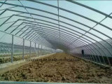 Multi-Überspannung Bogen landwirtschaftliches PC Film-Gewächshaus