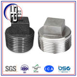 接続付属品の糸のステンレス鋼の正方形ヘッドプラグ
