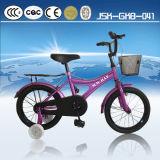 Sale caliente Model Child Bike con el CE Child Bicycle para Jsk-Gkb-036