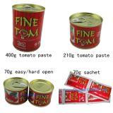 Pasta de tomate enlatada concentrada dobro do tipo de Gino para o mercado de Italy