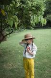 Camicia sveglia del cotone dei vestiti delle ragazze di Phoebee per la primavera/autunno