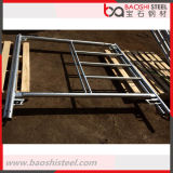 De gegalvaniseerde Steiger van het Frame van de Ladder van het Staal voor de Bouw