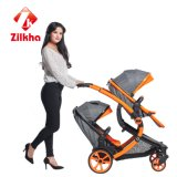 Coche con el marco y Carrycot regular del asiento y regular