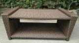 Vimine del patio del giardino/sofà del rattan impostato - mobilia esterna (LN-3028)