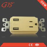 남 아메리카 두 배 2.1A 여성 소켓 벽 USB 소켓