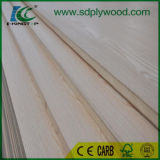madera contrachapada 23mm/25mm/32mm/40mm/Poplar/Blockboard para la fábrica de la puerta