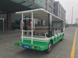 Nuevo vehículo eléctrico de la potencia verde 2017 para el parque de atracciones