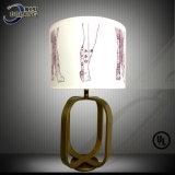 Tissu de mode avec l'éclairage de Desigen de configuration pour la lampe de Tableau d'hôtel