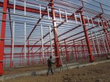 فولاذ بناء ورشة مع مرفاع