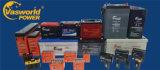 Batteria solare bassa eccellente di prezzi 12V 24ah per il servizio della Doubai e dell'Africa