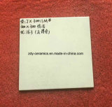 Tegels van de Steen van het Porselein van het Bouwmateriaal van Foshan De Rustieke