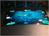 Draagbare LED Dancing Stage Dance Floor display