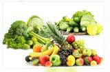 Contenitore di imballaggio a gettare della bolla della verdura e della frutta