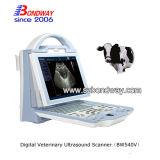 Varredor do ultra-som com ponta de prova para o veterinário