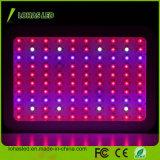 Hydroponic LED 플랜트 빛 300W 가득 차있는 스펙트럼은 빛을 증가한다