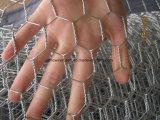 六角形ワイヤーケージは家禽の網に電流を通した