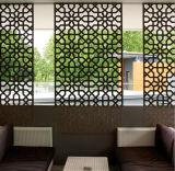 Schermi decorativi esterni perforati di alluminio della rete fissa tagliati laser